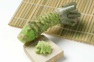 FRE-WASABI-ROOT[1]